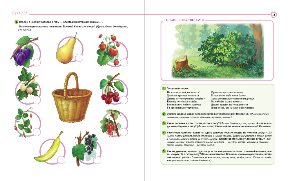 Ягоды. Грибы. Тематический словарь в картинках: Мир растений и грибов (формат 70х90/16, 80 стр.)