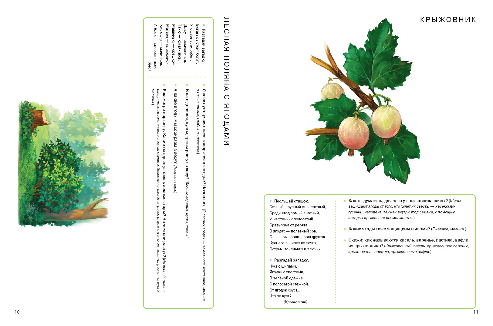 Ягоды. Грибы. Тематический словарь в картинках: Мир растений и грибов