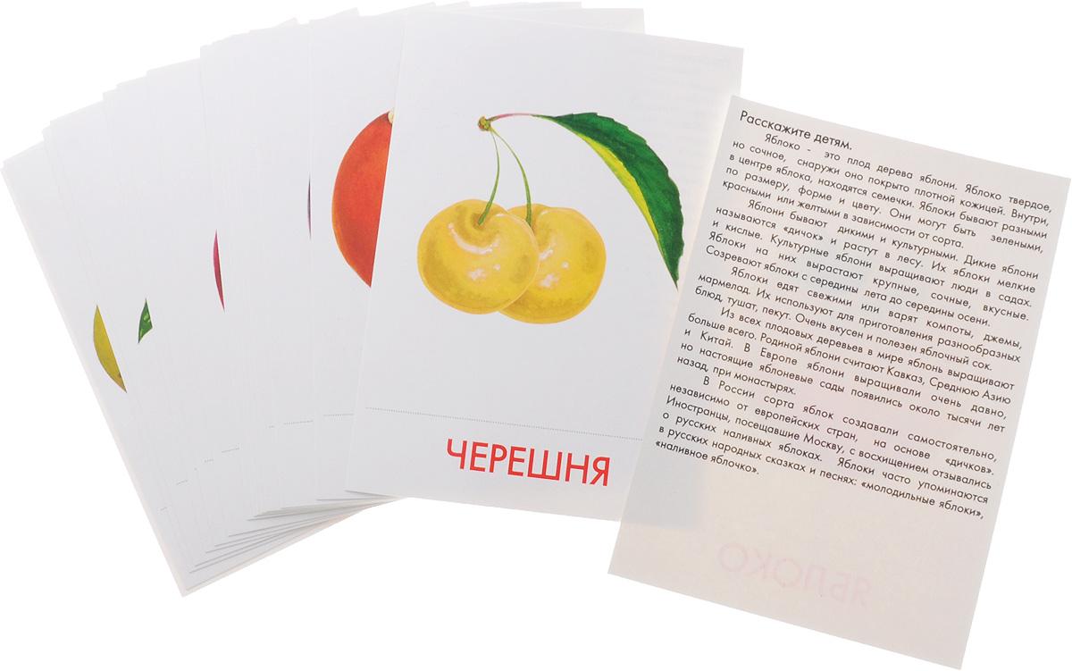 Маленький гений-Пресс Обучающие карточки Фрукты