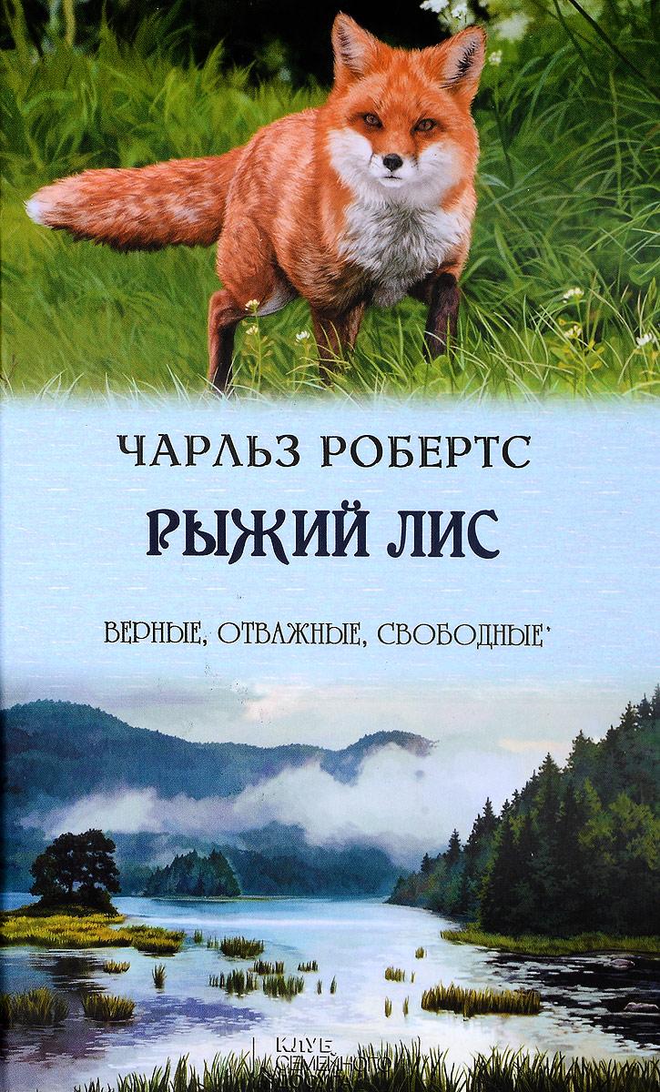 Рыжий лис