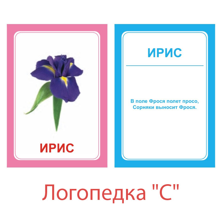 Обучающая игра Вундеркинд с пеленок Логопедические карточки Логопедка С
