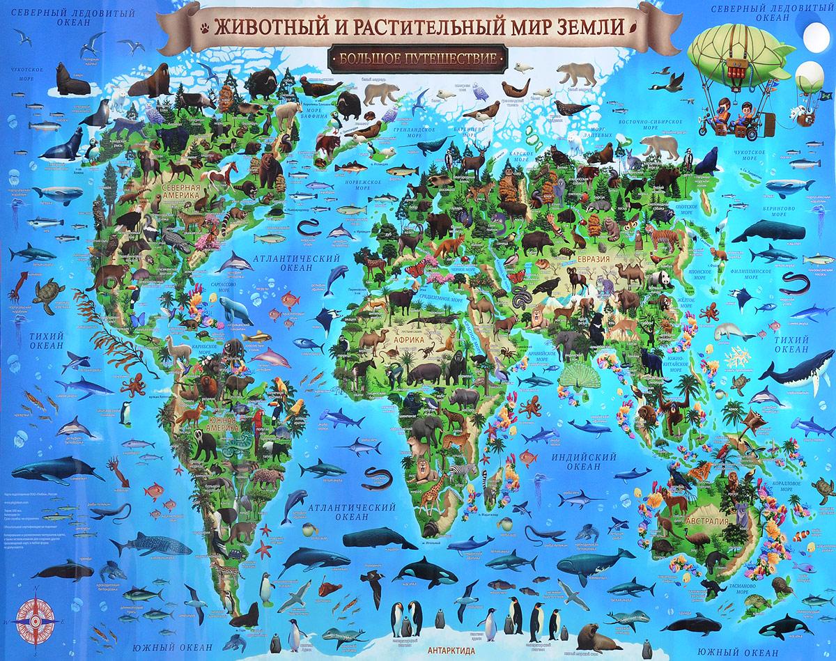 Животный и растительный мир Земли. Большое путешествие. Карта